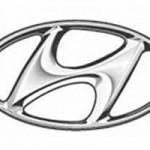 Hyundai H800 contro Tata Nano