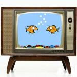 TV , ora è sotto esame per quel che riguarda la sicurezza stradale